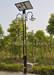 Solar lawn light, solar garden lights, solar street lamp