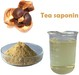 Tea saponin powder 75%