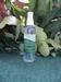 Artemisia Foot Spray