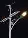 Hybrid Streetlight Powered by solar and Wind
