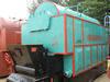 Dzl Coal Fired Steam Boiler