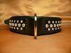 Ankit leather dog collar