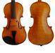Professional violin
