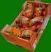Mandarine And Clementine With Leaf And Orange
