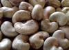 Garcinia Kola (Bitter Kola), Ginger, Garlic, Cashew Nut And Cassava