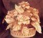 Jute Decorative items & Gifts