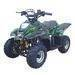ATV    QW-ATV-01