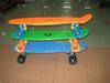 2012 ABS  Penny board skateboard Plastic Board Skateboard