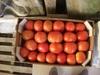 Kiwi, potatoes, tomatoes, oranges, mantarines, strawberries, cabbages