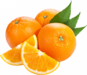 Citrus Navel Orange