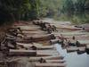 Siamese Rosewood logs