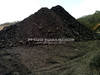 Indonesia Steam Coal GCV 5,000 Kcal/Kg (GAR)