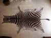 Zebra Skins /Hides