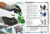 Safety gloves/PVC gloves/Rubber gloves/Nitril gloves/Kevlar gloves