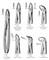 Shu & Company: Regular Seller, Supplier of: dental instruments, forceps, manicure instruments, needle holders, pedicure instruments, scalpels, scissors, surgical instruments, tweezers.