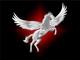 Pegasus Business Solution: Regular Seller, Supplier of: beverage, cement, food, steel, stone, metal, wood, cereals, investment. Buyer, Regular Buyer of: beverage, cement, food, steel, stona, metal, wood, cereals, investment.
