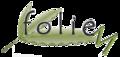 Foliem, LLC: Buyer of: essential oils, bottles, caps.