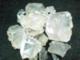 Abdullah Assagaf: Seller of: damar celebes, damar, damar resin, damar varnish, gum damar, gum damar agathis, gum damar copal, gum damar meranti, getah damar. Buyer of: polybag.