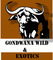 Gondwana Wild and Exotics: Seller of: live birds, live insects, animal skulls, live mammals, live reptiles, live amphibians, hides and skins. Buyer of: crocodileconvillage, crocodileconvillage.