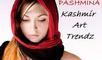 Kashmir Art Trendz: Seller of: pashmina stoles, pashmina shawls, pashmina jamavors, embriodaried pashmina, fine wool stoles, fancy jackets, ladies suits, scarves, bed sheets silk cotton with hand embriodary.