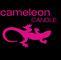 International Cameleon Group SARL