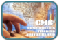 CMS Supply Chain Management Switzerland: Seller of: ordinary portland cement, crude oil derivatives, consumer electronics. Buyer of: consumer electrononics, apple iphone, sony notebooks.