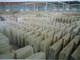 Tenon stone Co., Ltd.: Seller of: stone, marble, granite, chinese porotormutigreen, g602g603onxy yellow, china whitecrystal white, royal grain, chinese butterfly, multicoloured green.