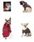 Yancheng Wantong PET Products Factory: Seller of: cool summer and warm winter dog clothing, spring and summer pet apparel, tank tops and t-shirts, dog clothing, dog clothes, pet apparel.