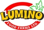 Lumino Food Farms: Seller of: fresh and smoked cat fish, cocoyam flour, melon seeds, legumes, vegetables, spices, ginger and garlic, snails, processed food stuffs. Buyer of: cars, clothing, diapers, shoes, food items.