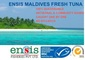 Ensis Fisheries: Seller of: fresh tuna, tuna loins, frozen tuna, tuna steak, skipjack tuna, yellowfin tuna.