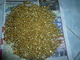 Kimberlyholding c.c: Seller of: gold, gold nugget.