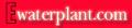 Ewaterplant.com: Seller of: aquarium plant, pond plant, aquatic plant, water lily, lucky bamboo, adenium.