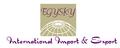EgySky International
