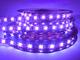 Venus Opto Technology Co., Ltd.: Seller of: led bulb, led strip, led flood light, led flash light, led auto lamp, led ceiling, led shoot, led underwater light, led washer light.