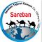 Sareban Trading Co.: Seller of: almonds, dates, pistachio, raisin.