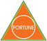 C. I. Fortune Holding & Trading, S. A. S.: Seller of: gold, coal, coke, coking coal, house coal, sized coal, steam coal, silver, platinum.