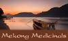 Mekong Medicinals: Seller of: thai herb compress, thai herbs, thai massage supplies, thai herbal compresses, luk pra kob, thai stem, sauna blends. Buyer of: thai herbs, thai massage supplies, thai medicines, fisherman pants, rice bags, thai soap, thai stem, thai compresses, thai herb ball.
