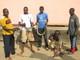 Ebeki Zoo: Seller of: cain rat, crocodile, monkey, night monitor, python, insects, animal skull, animal skin. Buyer of: laptops, phones, projectors.